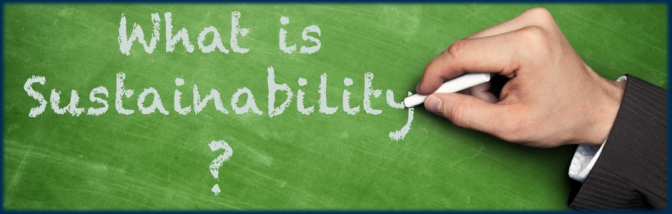 what-is-sustainability